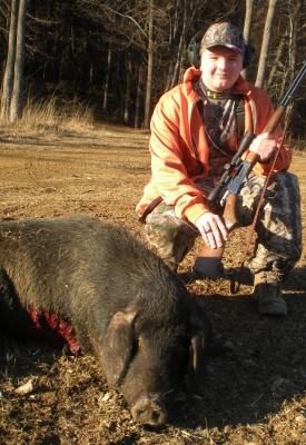Texas-Hog2