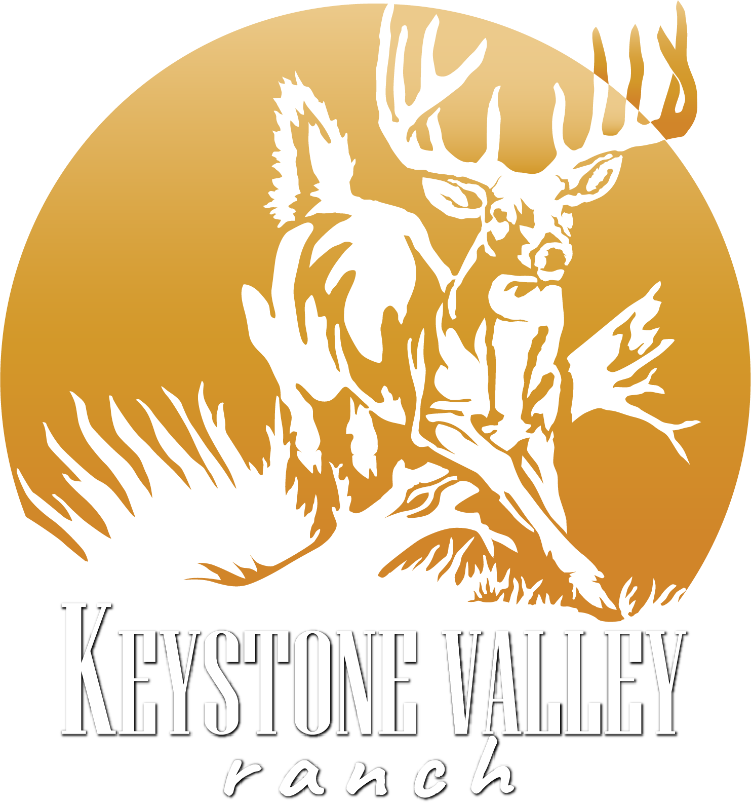 Guided Hunts For Trophy Bucks Wild Boar And Elk In Pa Keystone Valley Ranch